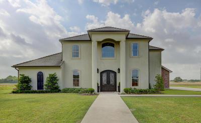 Breaux Bridge Single Family Home For Sale: 1084 Bear Creek