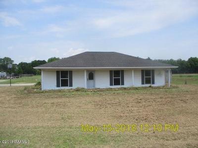 Breaux Bridge Single Family Home For Sale: 1056 Grand Bois Road