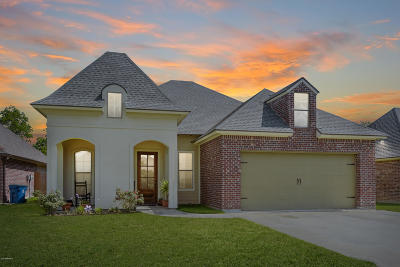 Single Family Home For Sale: 203 Grassland Avenue