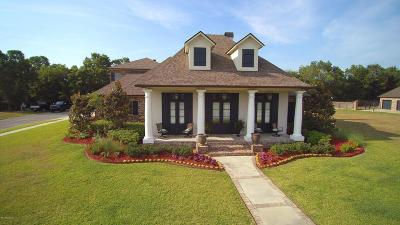 Single Family Home For Sale: 201 Grandview Terrace Drive