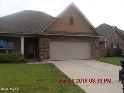 Youngsville Single Family Home For Sale: 111 Peak Valley Street