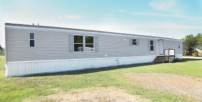 Breaux Bridge Single Family Home For Sale: 1055 Carolyn Rose Drive