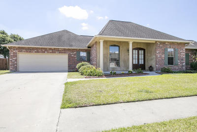 Copper Meadows Single Family Home For Sale: 114 Brookhaven Drive