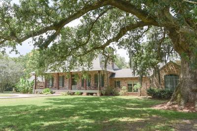New Iberia Single Family Home For Sale: 4517 Loreauville Road