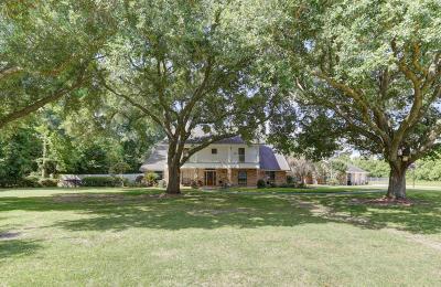 Lafayette Parish Single Family Home For Sale: 250 E Farrel Road