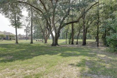 Vermilion Parish Residential Lots & Land For Sale: 8301 River Road