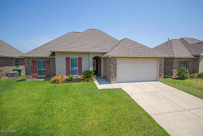 Youngsville Single Family Home For Sale: 217 Forest Grove Drive