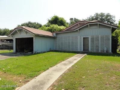 Iberia Parish Single Family Home For Sale: 517 Caroline Drive
