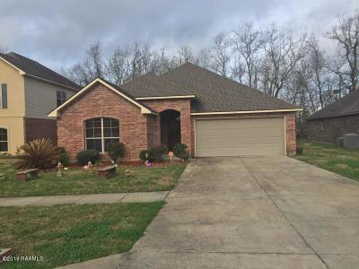 Carencro Single Family Home For Sale: 123 Endicott Drive