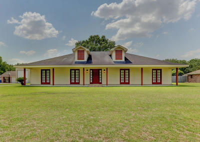 Carencro Single Family Home For Sale: 102 Potomac Drive