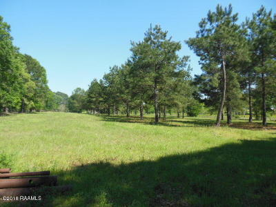 Acadia Parish Farm For Sale: 1779 Jacob Road