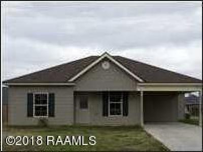 Breaux Bridge Single Family Home For Sale: 933 Lillian Michel Drive