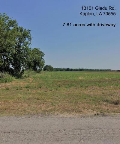 Vermilion Parish Farm For Sale: 13101 Gladu Road
