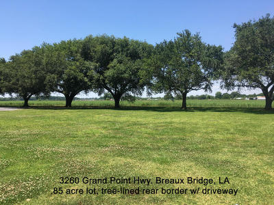 St Martin Parish Residential Lots & Land For Sale: 3260 Grand Point