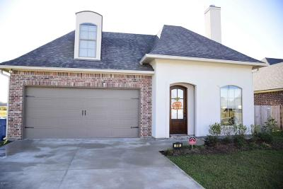 Single Family Home For Sale: 110 Meadow Gate Drive