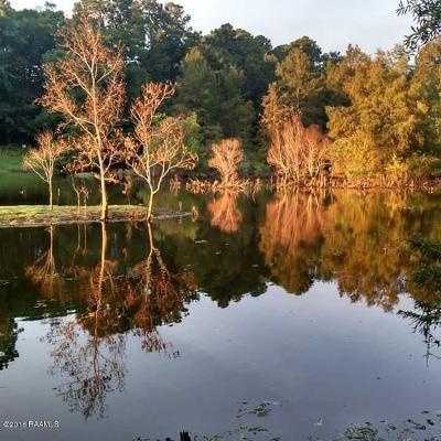 Sabine Parish Residential Lots & Land For Sale: Tbd Sunshine Dr Drive