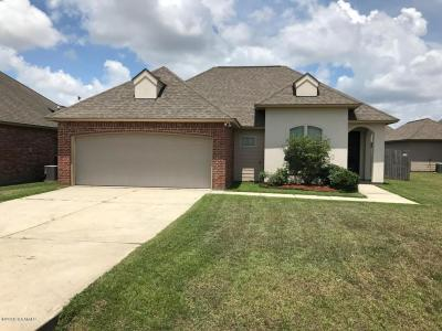 Youngsville Single Family Home For Sale: 411 Clay Drive