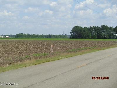 Iberia Parish Residential Lots & Land For Sale: 2-E Crochet Road