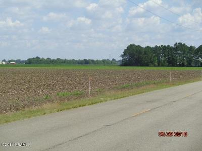 Iberia Parish Residential Lots & Land For Sale: 2-F Crochet Road