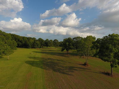 St Martin Parish Residential Lots & Land For Sale: 1094 Ti-Adam Guidry Road