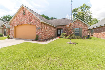 Copper Meadows Phase Ii Single Family Home For Sale: 304 Quiet Meadows Circle