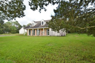 Abbeville Single Family Home For Sale: 19013 Theall Road