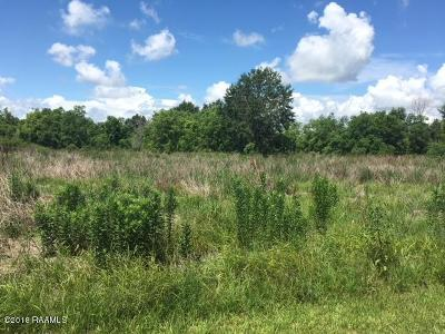 Opelousas LA Farm For Sale: $110,000