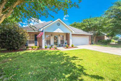 Copperfield Single Family Home For Sale: 401 N Rushmore Lane