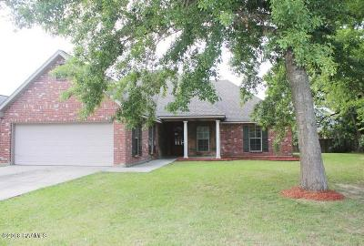 Single Family Home For Sale: 609 Beacon Drive