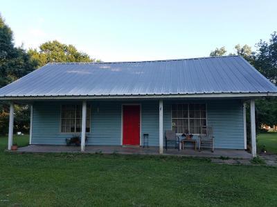Breaux Bridge Single Family Home For Sale: 1032 Toice Guidry Road