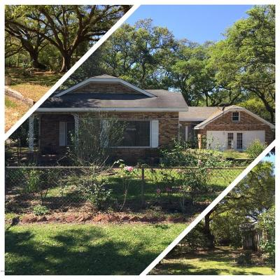 Mamou Single Family Home For Sale: 401 4th Street