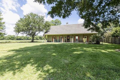 Breaux Bridge Single Family Home For Sale: 3094c Grand Point Hwy