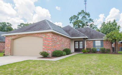 Copper Meadows Phase Ii Single Family Home For Sale: 302 Quiet Meadows Drive