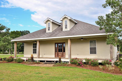 Carencro Single Family Home For Sale: 408 Rue Carnot