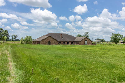 Abbeville Single Family Home For Sale: 7309 W La Hwy 338
