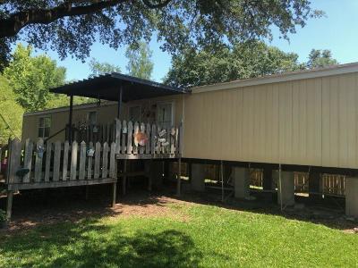 Breaux Bridge Single Family Home For Sale: 1062 Evangeline Street