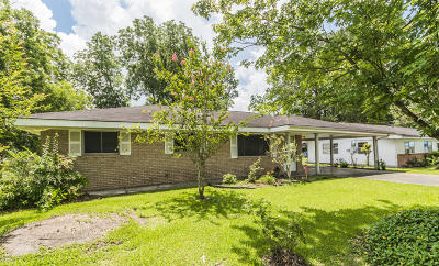 Iberia Parish Single Family Home For Sale: 411 Caroline Street