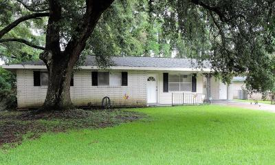 Lafayette Single Family Home For Sale: 224 Venus Drive