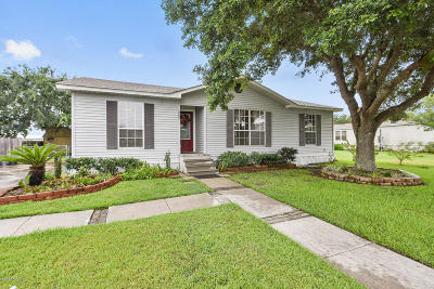 Youngsville Single Family Home For Sale: 102 Windchimes Drive