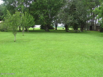 Iberia Parish Residential Lots & Land For Sale: 4405 Forest Leblanc Road