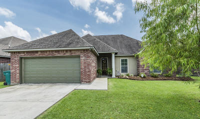 Youngsville Single Family Home For Sale: 428 Clay Ridge Drive