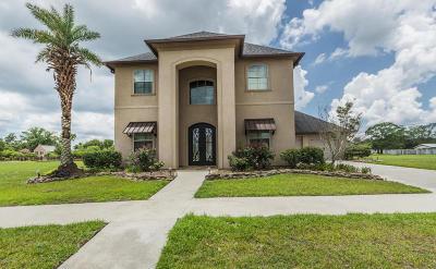 Breaux Bridge Single Family Home For Sale: 225 Bridgewater Place