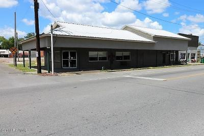 Acadia Parish Commercial For Sale: 201 E Texas Avenue