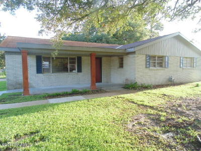 Iberia Parish Single Family Home For Sale: 706 Loreauville Road