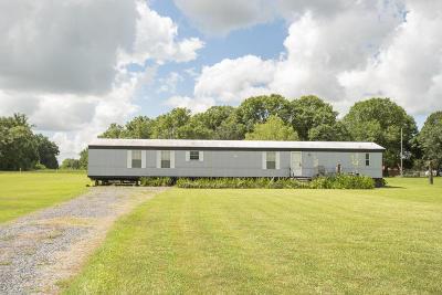 Breaux Bridge Single Family Home For Sale: 1050 Ko Dupuis Road