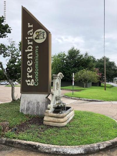 Lafayette Rental For Rent: 220 Doucet Bldg B Unit 216 Road