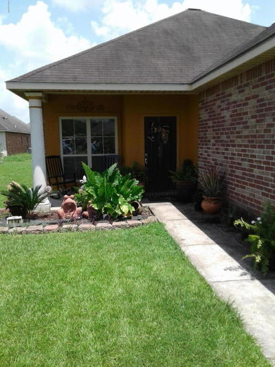 Carencro Single Family Home For Sale: 104 Sunny Oak Trail