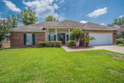 Copperfield Single Family Home For Sale: 135 Woodstock Drive
