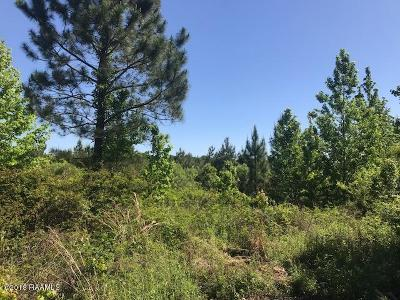 St Landry Parish Residential Lots & Land For Sale: McCarthy Lane