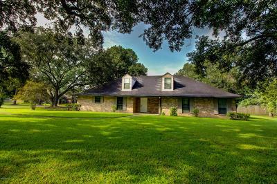 New Iberia Single Family Home For Sale: 717 Oak Manor Drive
